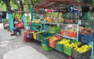 typical fruit and veggie stand costa rica
